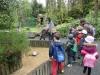10-zoo-classe-04